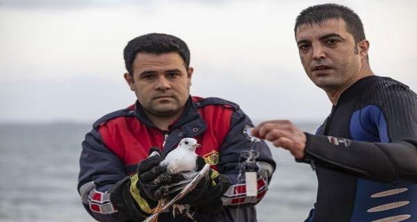 Ayağına misina takılan martı ile yardıma giderken arızalanan teknedeki 2 kişi kurtarıldı