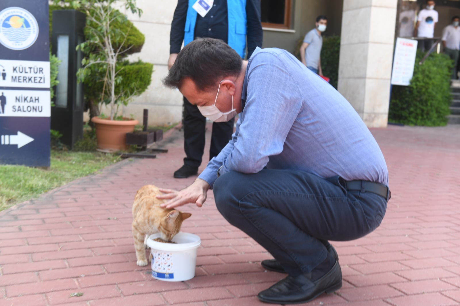 Yenişehir Belediyesi sokak hayvanlarını yalnız bırakmıyor